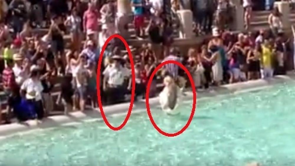 Turista nella fontana di trevi come anita ekberg - Bagno fontana di trevi ...