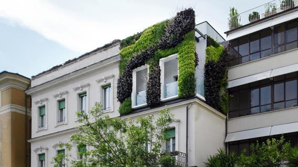 A prati spunta un giardino verticale in via degli scipioni for Architetto italiano famoso