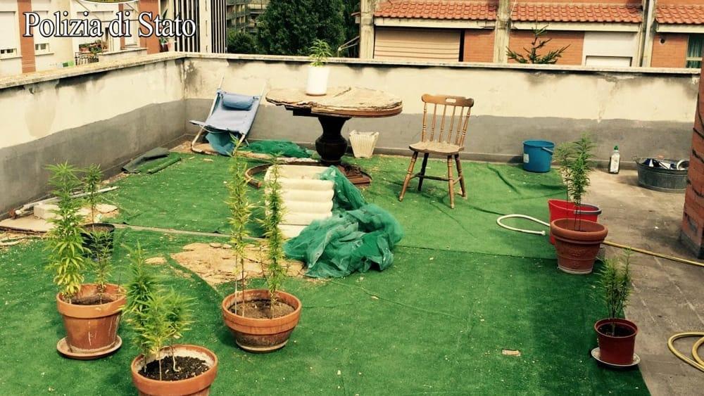 San Basilio: coltivava marijuana sul terrazzo condominiale, arrestato