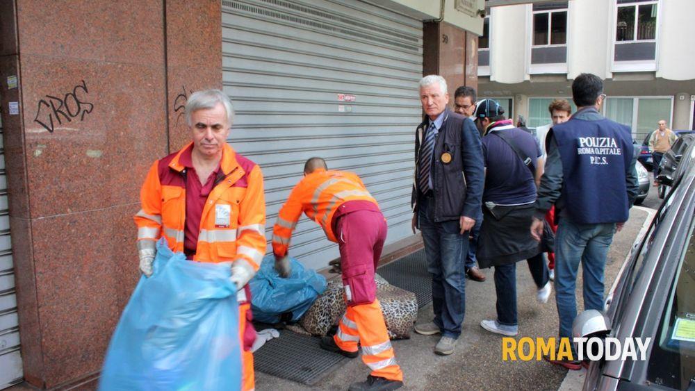 Porta portese venditori abusivi nel mirino dei pics - Porta portese offerte lavoro roma ...