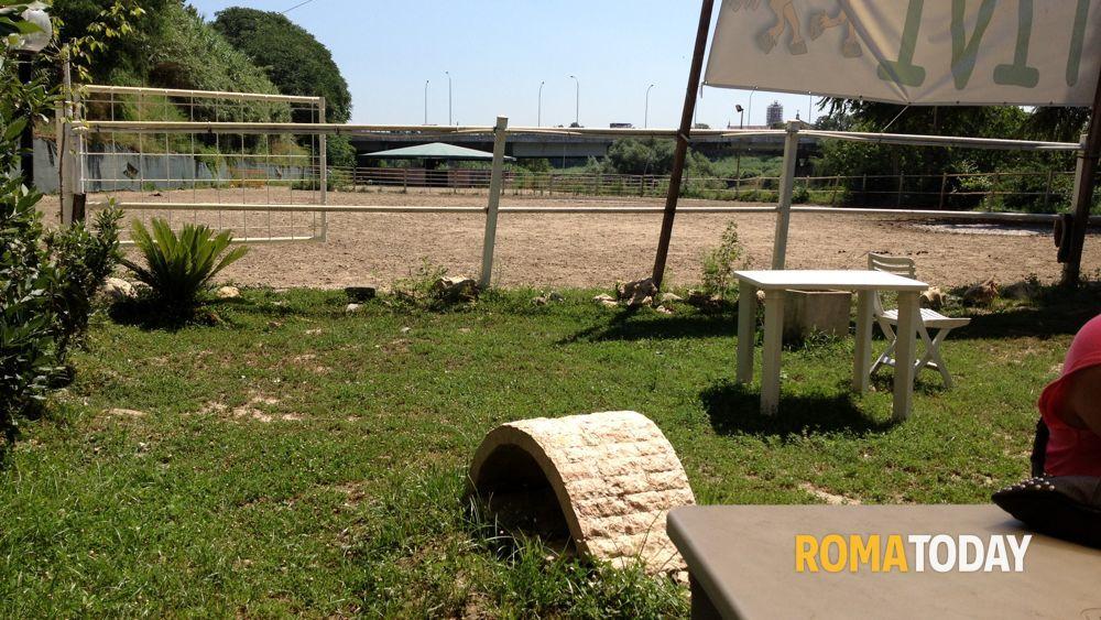 Ponte marconi i resti della casa di rita 12 for Ponte sul davanti della casa