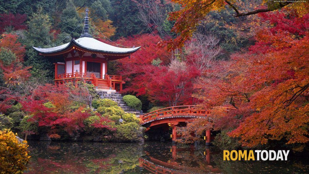 Giardino giapponese a roma le visite guidate di aprile