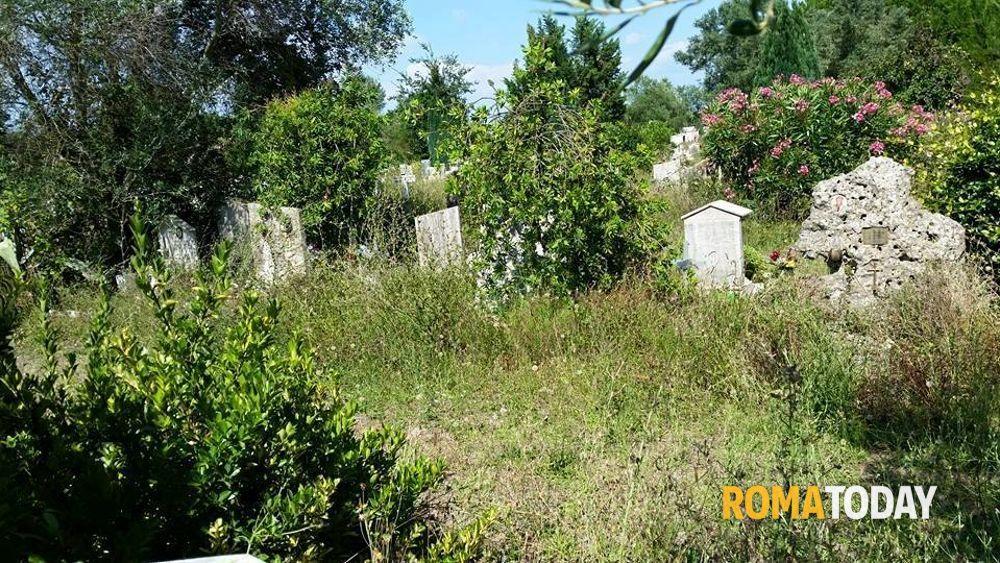 Cimitero di prima porta lapidi tra erbacce e rovi - Cimitero flaminio prima porta ...