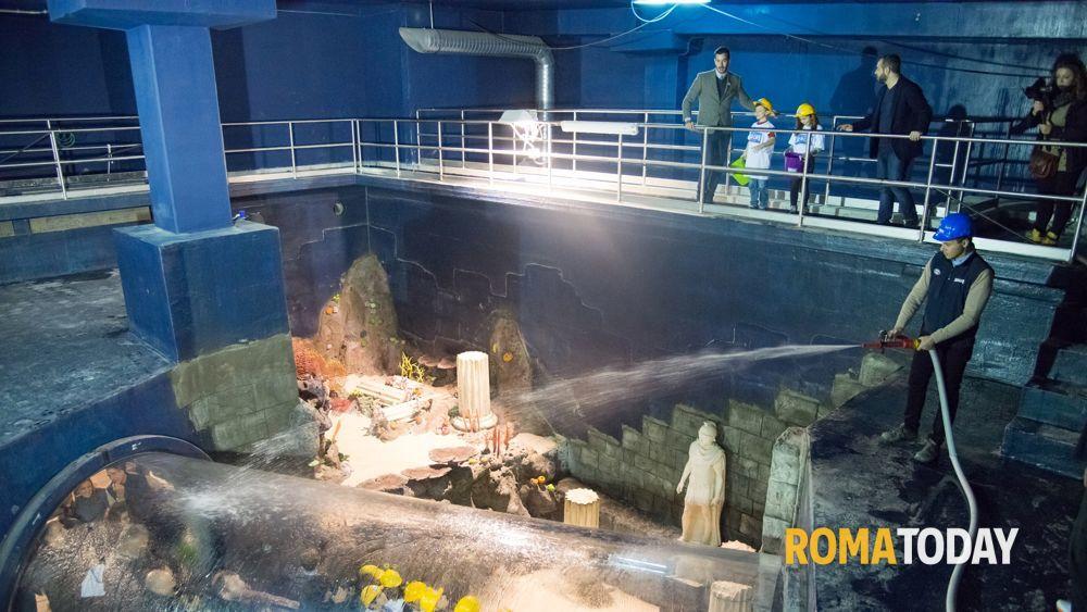 L 39 aquario di roma inizia a riempirsi aprir nella for Acquario a colonna